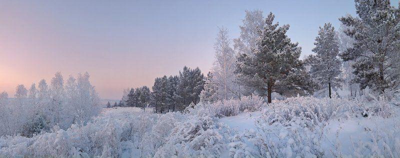 Вечер, Зима, Лес Вечер на границе лесаphoto preview