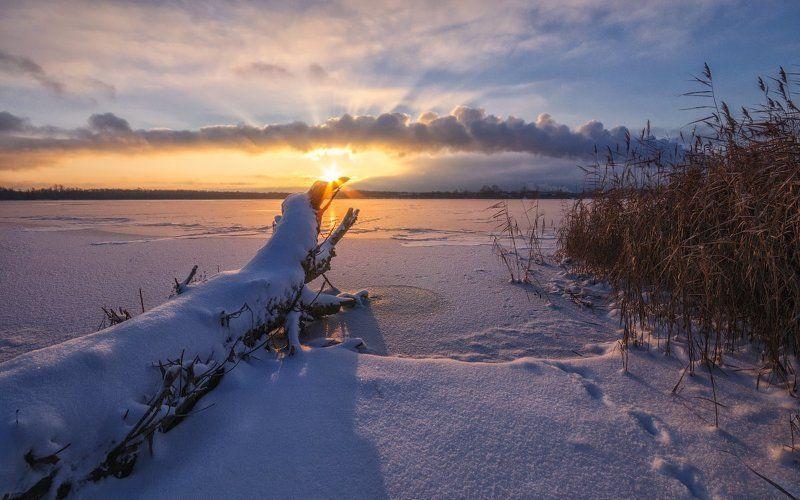 Зима, Озеро, Подмосковье, Снег, Солнце, Утро, Шатура Навстречу солнцуphoto preview
