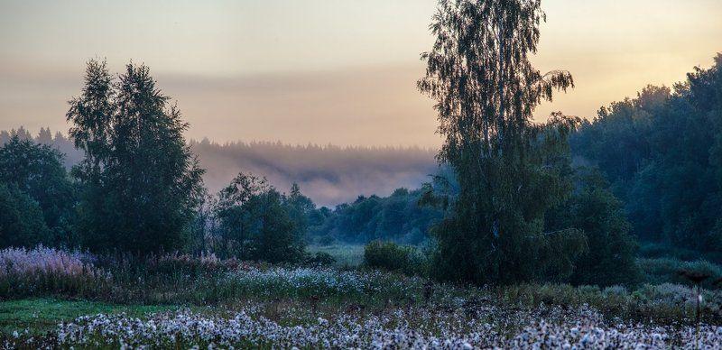 Утро в сиреневых тонахphoto preview