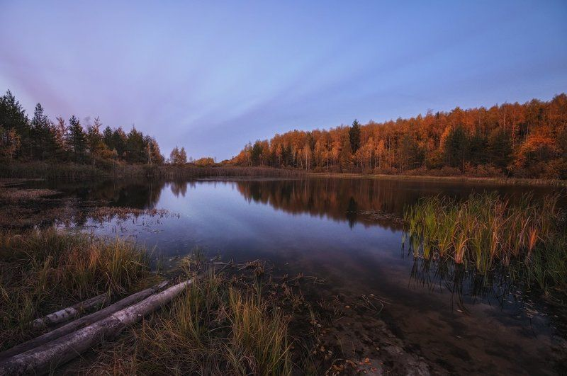 Вечер, Осень, Подмосковье, Пруд Осенним вечером у прудаphoto preview