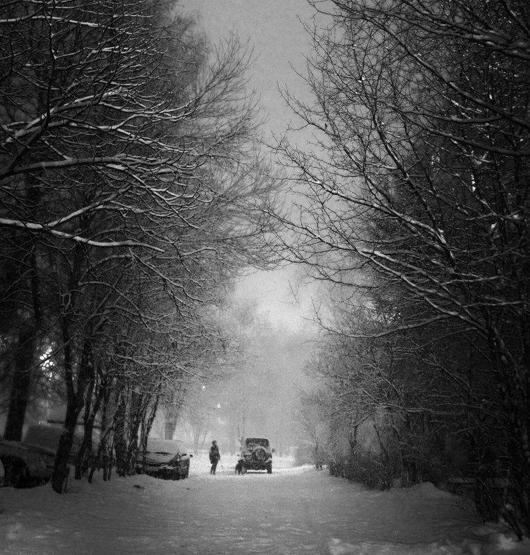 Снегопадphoto preview