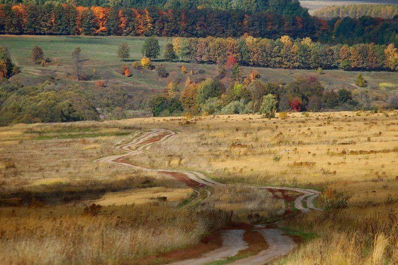 Осень, Природа Краски осени.photo preview