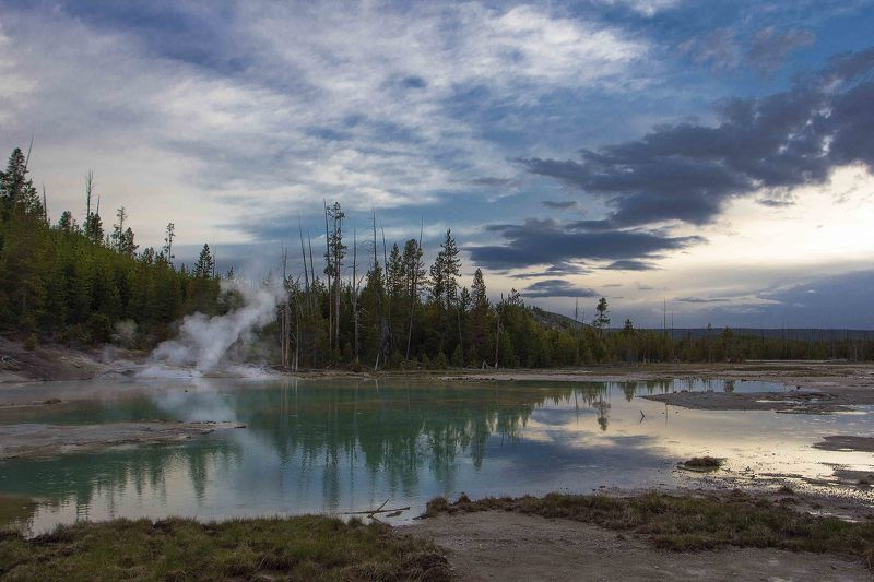 hot springs, norris area, porcelain pool, steam, yellowstone ***photo preview