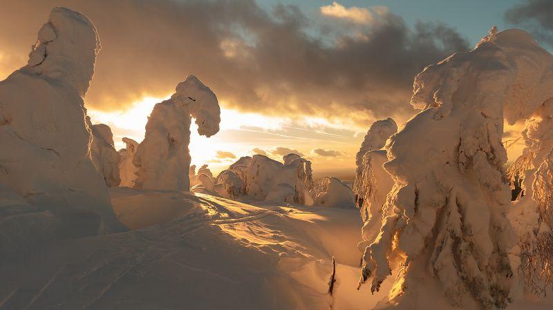 Пейзаж, Пермский край, Природа Колчимский каменьphoto preview