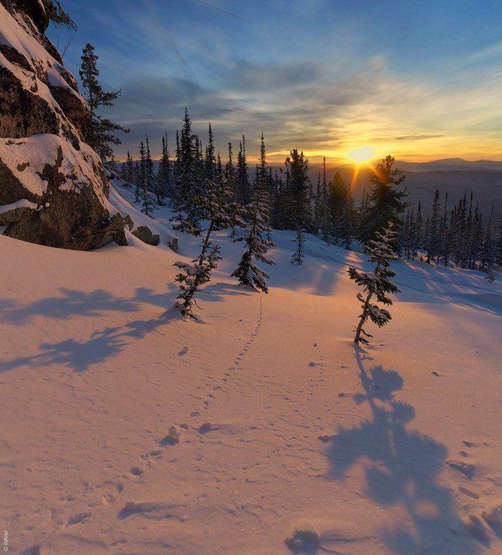 горная, зима, рассвет, шория PRO Утро у скалphoto preview