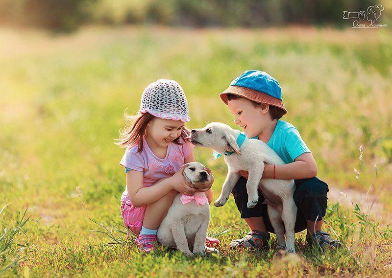 дети, детская фотосессия, мальчик и девочка, фотограф колчина ольга, фотосессия с щенками Первая любовьphoto preview