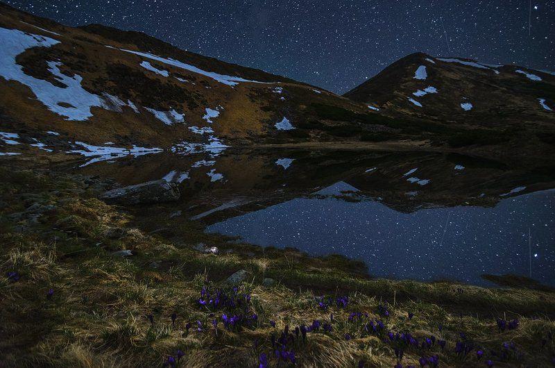 горы, звезды, Карпаты, крокусы, небо, ночь, озеро, Несамовитое Подарок места Силыphoto preview