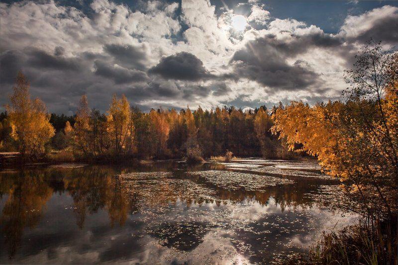 Уж небо осенью дышало...photo preview