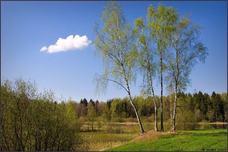 пейзаж Русский пейзажphoto preview