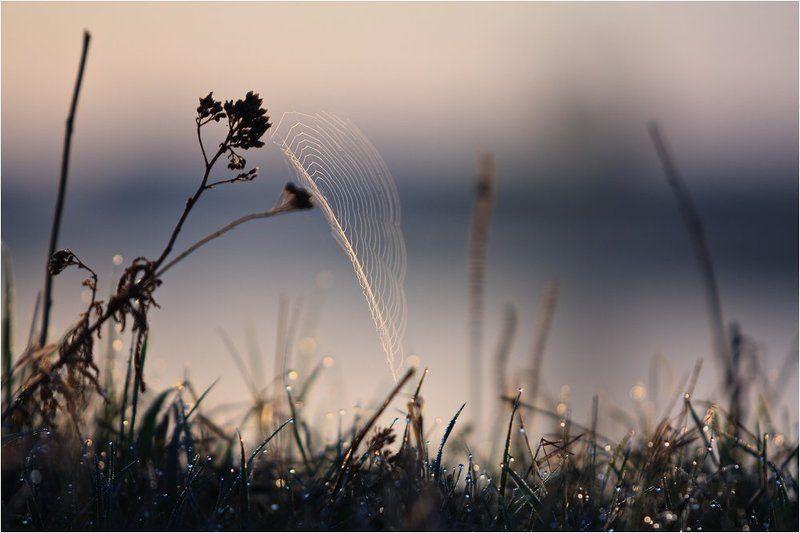 куяшкино, башкирия, река, белая Весенний парусphoto preview