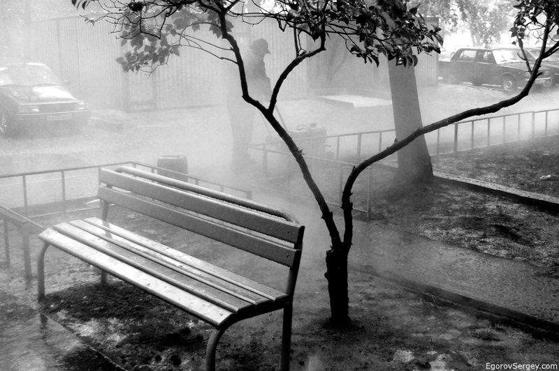 статье картинки скамейка и дождь неважно, сообщала