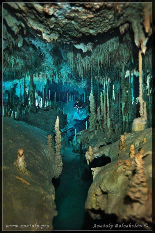 Dream Gate, Анатолий Белощин, Мексика, Подводная пещера, Юкатан Dream Gate (подводная пещера)photo preview