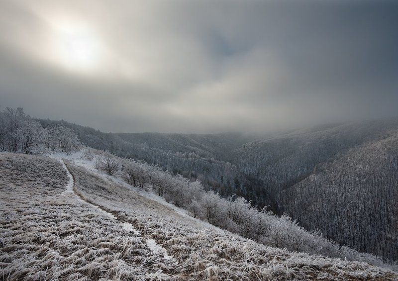 Жигулевские горы, Жигули, Зима, Иней, Мороз, Национальный парк, Облака, Самарская лука, Тропинка, Туман, Утро Последний день зимыphoto preview