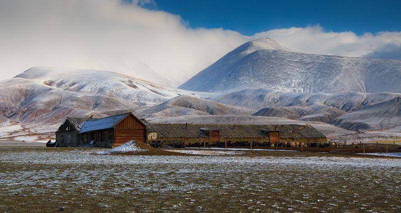 Morning, Mountains, Sky, Горы, Дом, Животные, Небо, Облака, Пейзаж Стойбище в горахphoto preview