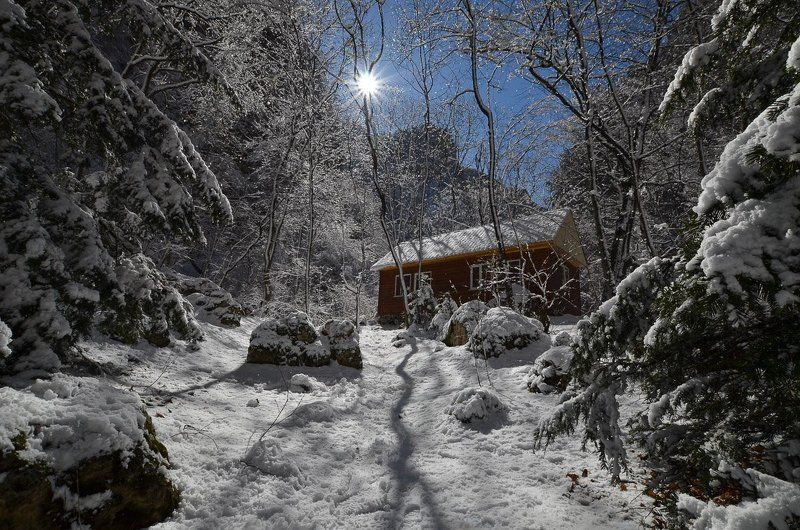 Зимняя сказкаphoto preview