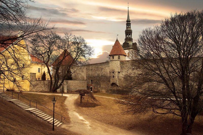 Tallinnphoto preview