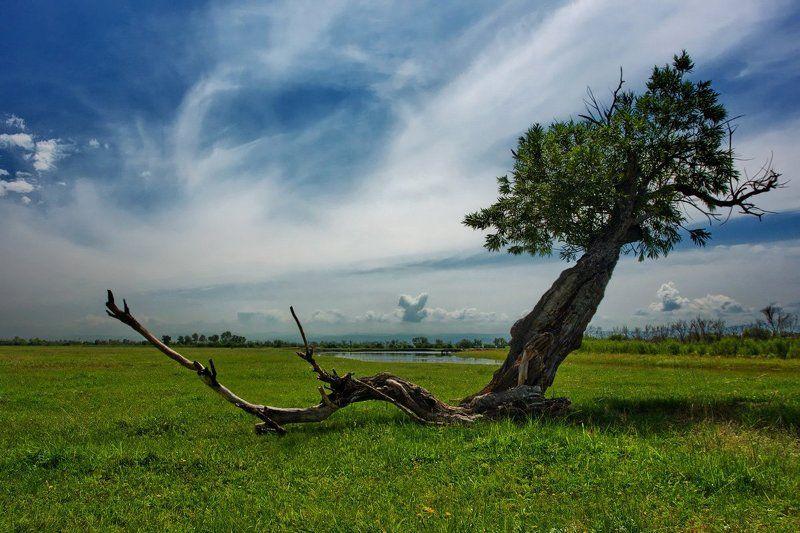 И баргузинские какие там ветра...photo preview