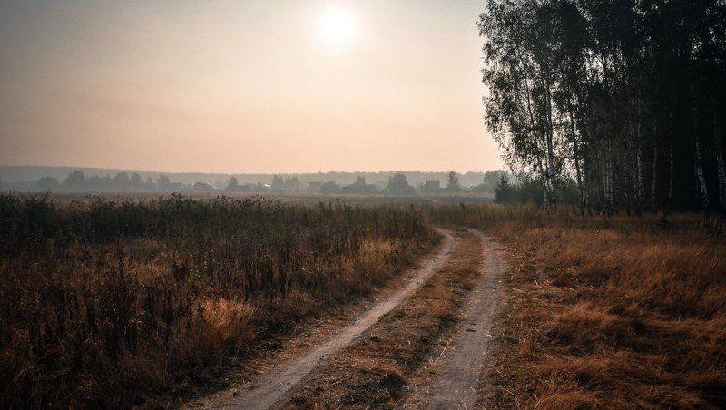 Лес, Природа небо, Солнце Мартphoto preview