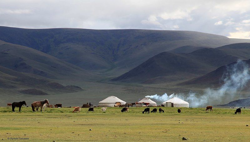 Монголия, Степь, Юрты Вечер в степи.photo preview