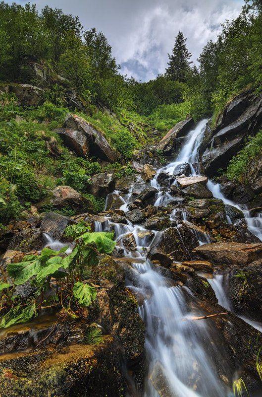 горы,Карпаты,водопад,Смотрич,лопухи,камни Мгновенье у Смотричаphoto preview
