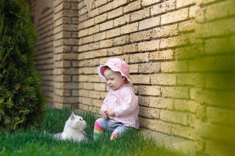 дети, ребенок, кот, трава, cat, green, kids, child Friendsphoto preview