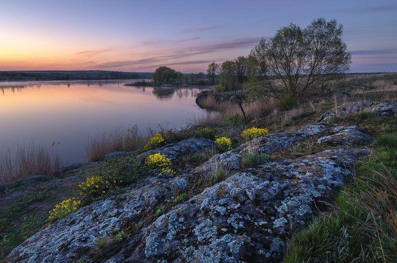 река, Сугоклей, ивы, камни, рассвет, цветы Гармония стихийphoto preview