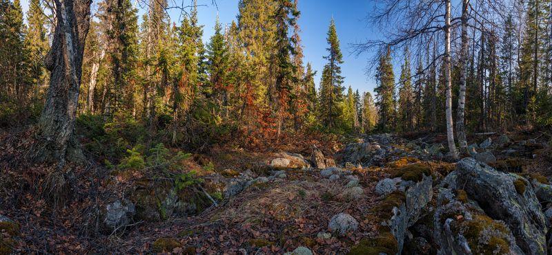 Весна, Камни, Лес, Таганай, Южный урал В гости к лешим да кикиморамphoto preview
