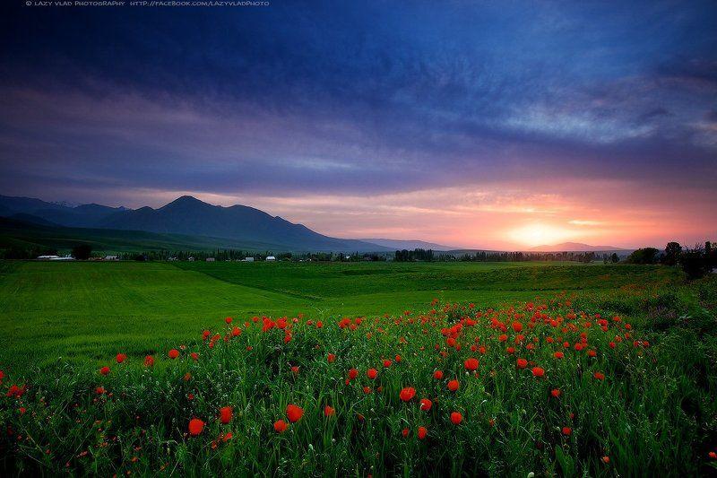 киргизия, ала-тоо, горы, май, lazy_vlad, lazyvladphoto, landscape, kyrgyzstan Время для медитацийphoto preview