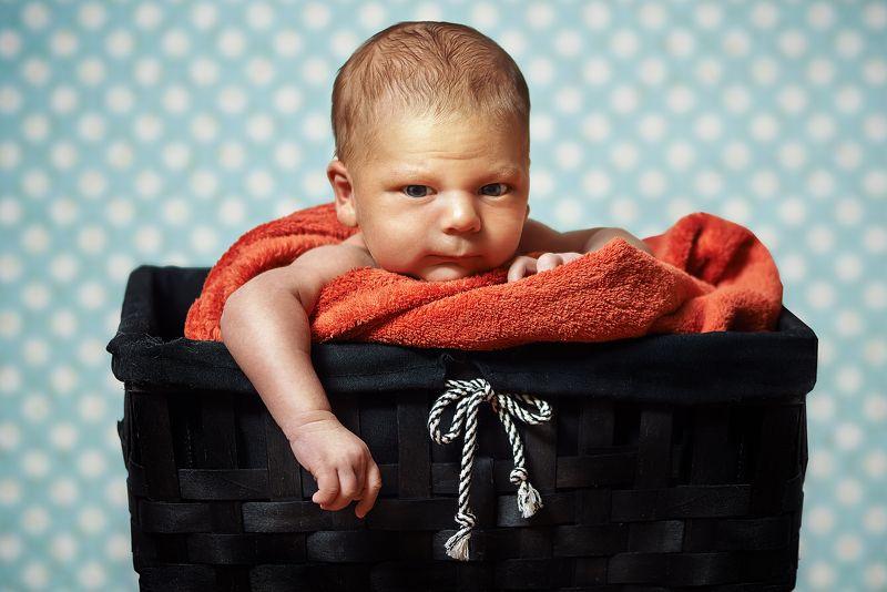 ребенок, новорожденный, 20 дней, первый месяц, корзина, сын Маленький большойphoto preview