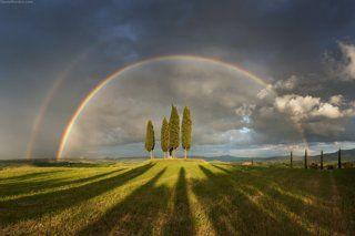 Под небом Тосканы
