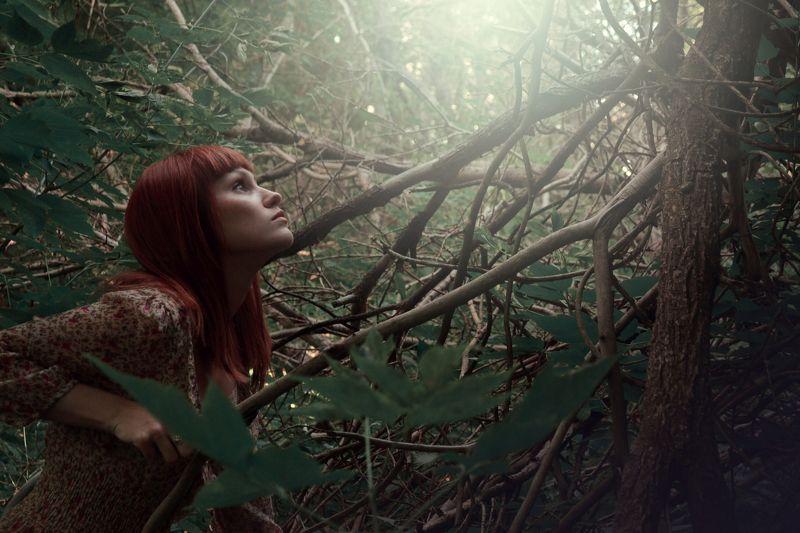 Elf, Forest, Light, Old tree, Portrait, Summer Lightsphoto preview