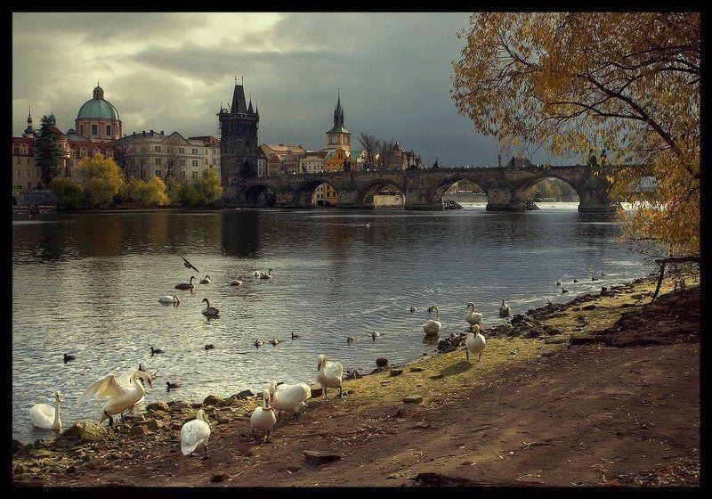 Praga #1photo preview