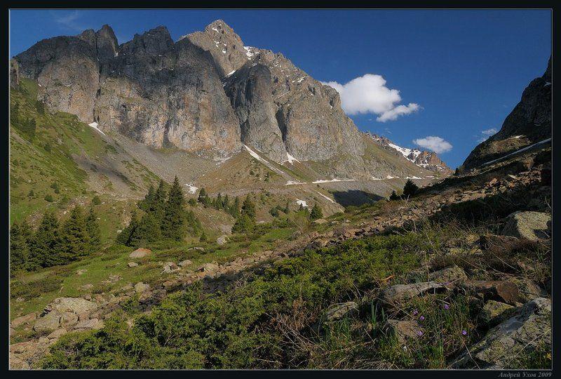 природа,горы,лето,ущелье,лес,цветы,скалы,деревья,трава,облака,река,елки Дорога к ледникамphoto preview
