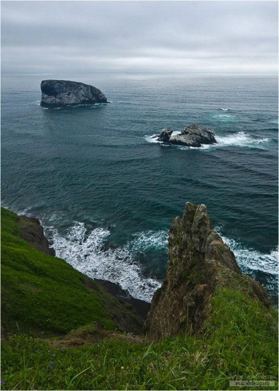 камчатка, тихий океан, остров птичий У острова Птичийphoto preview