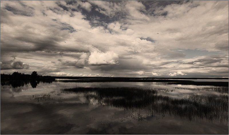 озеро,  облака, петербург. На недельку до второгоphoto preview