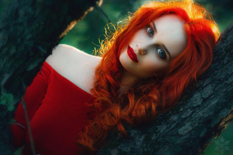красное, красивая девушка, портрет, Woman in Redphoto preview