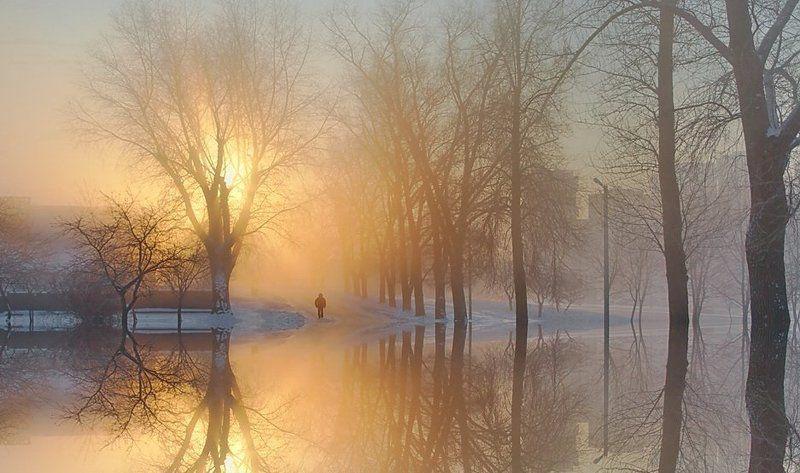 утро солннце свет вода ...к свету... *photo preview