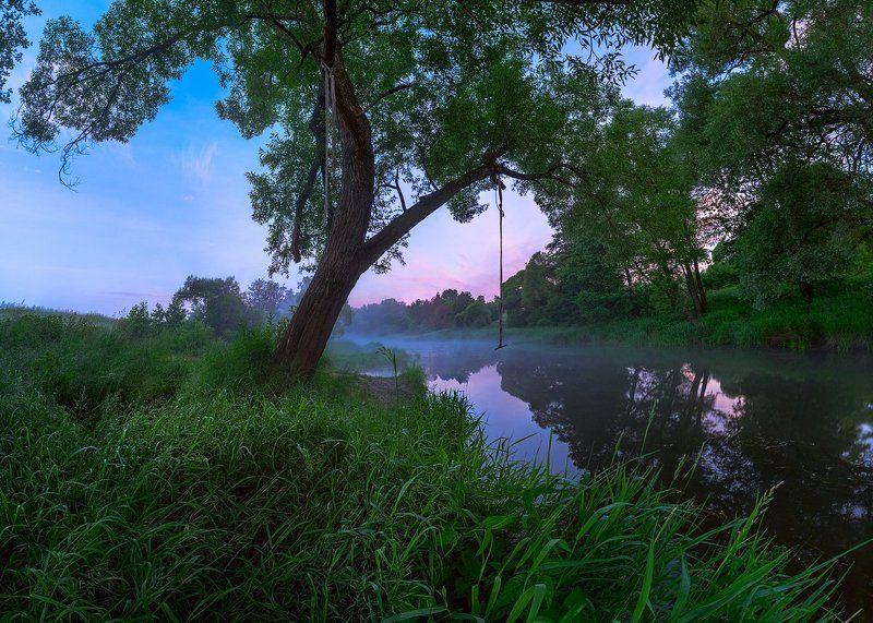 тарзанка, дерево, река, утро, туман Тарзаночка photo preview