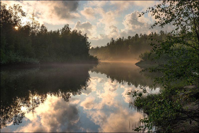 Пейзаж, Туман После дождяphoto preview