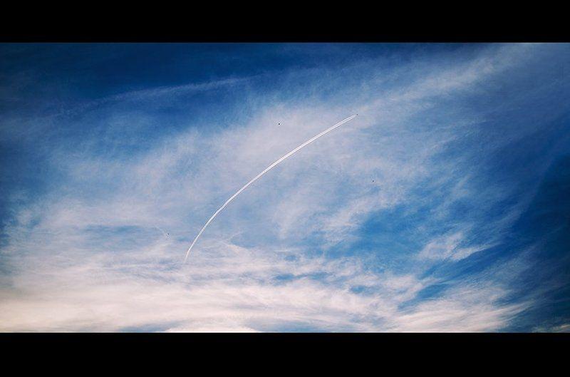 летать, полет, самолет, птицы, небо, синий, fly, birds, sky Каждый летает по-своемуphoto preview