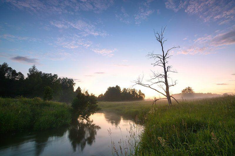 природа, река Созерцая...photo preview