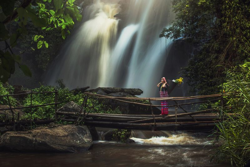 chiangmai, river, outdoor, tree, thailand, stone, park, green, travel, flow, scenery, flowing, tourist, heaven, mae, wonderful, wood, forest, fall, relax, conserve, cascade, wild, vacation, wet, ya, natural, vibrant, tropical, spring, rock, leaf, stream,  phadokseaw waterfall in chiangmai thailand.photo preview