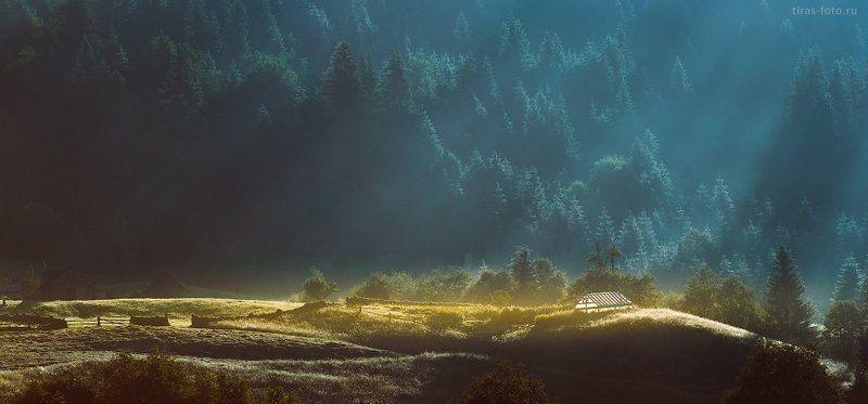 Карпаты, горы, рассвет, лето, туман лучиphoto preview