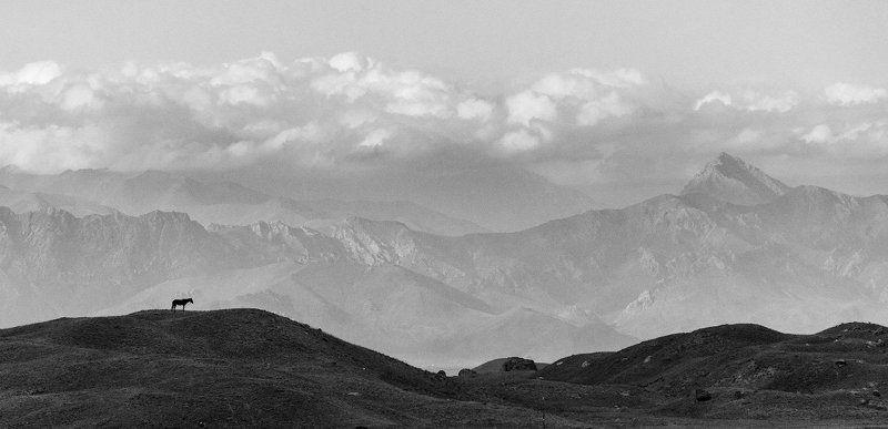 Ачик-Таш, пик Ленина, Киргизия, Памир, лошадь, горы, небо, облака На поляне Ачик-Ташphoto preview