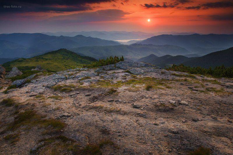 Карпаты, горы, рассвет, лето Рассвет на Вухатом камнеphoto preview