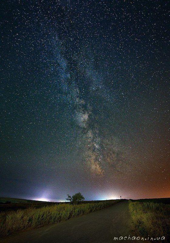 ночь, поля, подсолнухи, звёзды Ночноеphoto preview