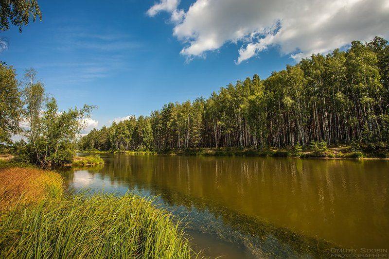 Вода, Дикая природа россии, Лес, Лето, Небо, Облака, Озеро, Природа, Солнце озероphoto preview