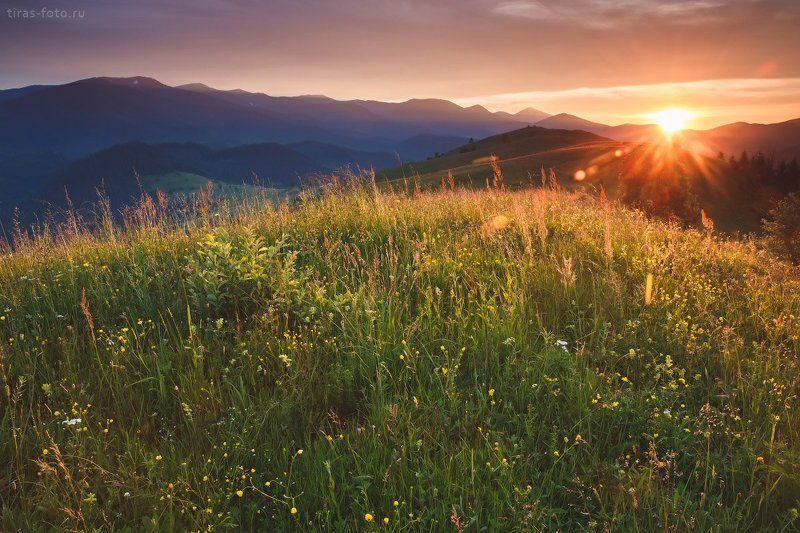 Карпаты, горы, закат, лето Вечер в Карпатахphoto preview