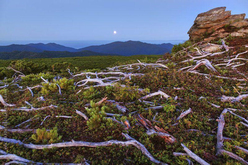 Сахалин, остров, Россия, путешествия, закат, на вершине, машина, джип, красота, природа, смотровая, sunset, nature, Russia, Sakhalin, island, at the top, viewpoint, moon ***photo preview