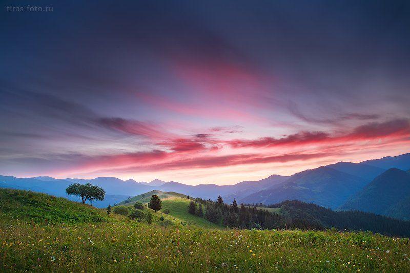 Карпаты, горы, закат, лето Закатноеphoto preview